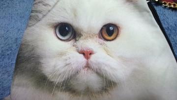 あちゃちゅむ★白猫ポーチバッグ★猫★にゃんこ